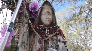 #RecorridoUrbano desde el Camposanto del Saucito #BetoCabrera #ChrisNavarro