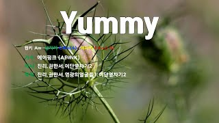 [은성 반주기] Yummy - 에이핑크(APINK)