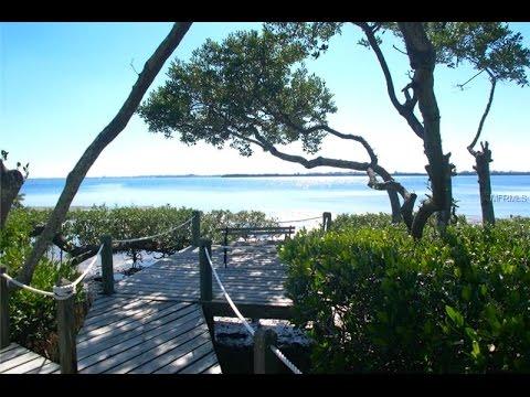 Sarasota Bay's Hidden Gem: Tidy Island