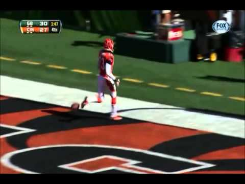 Ultimate Terence Newman Highlights