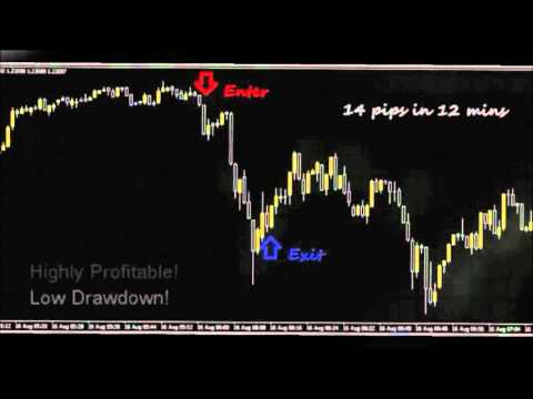 Forex factory 100 pips a day
