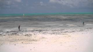 The tides of Zanzibar - one hour timelapse (Jambiani, Zanzibar - September 2012)