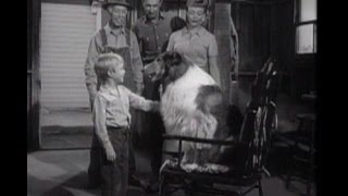 "Lassie - ""the Rocking Chair"" - Episode #149 - Season 5, Ep. 6 - 10/12/1958"