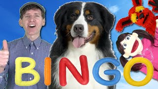 BINGO Dog Song | Nursery Rhymes | Learn English Kids