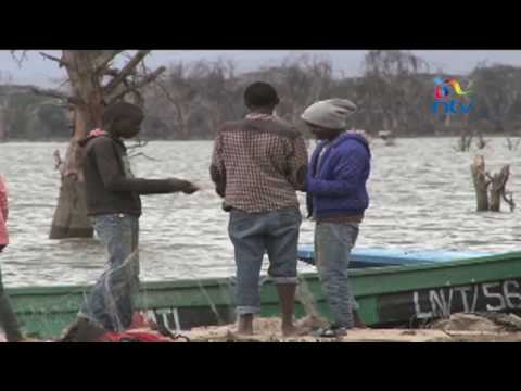 Lake Naivasha threatened by increasing levels of pollution