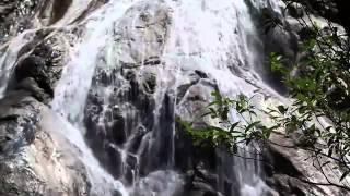 видео Туры на Маврикий из Барнаула
