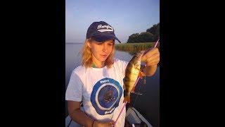 Рыбалка на Рузском водохранище ч.2 бешенный окунь