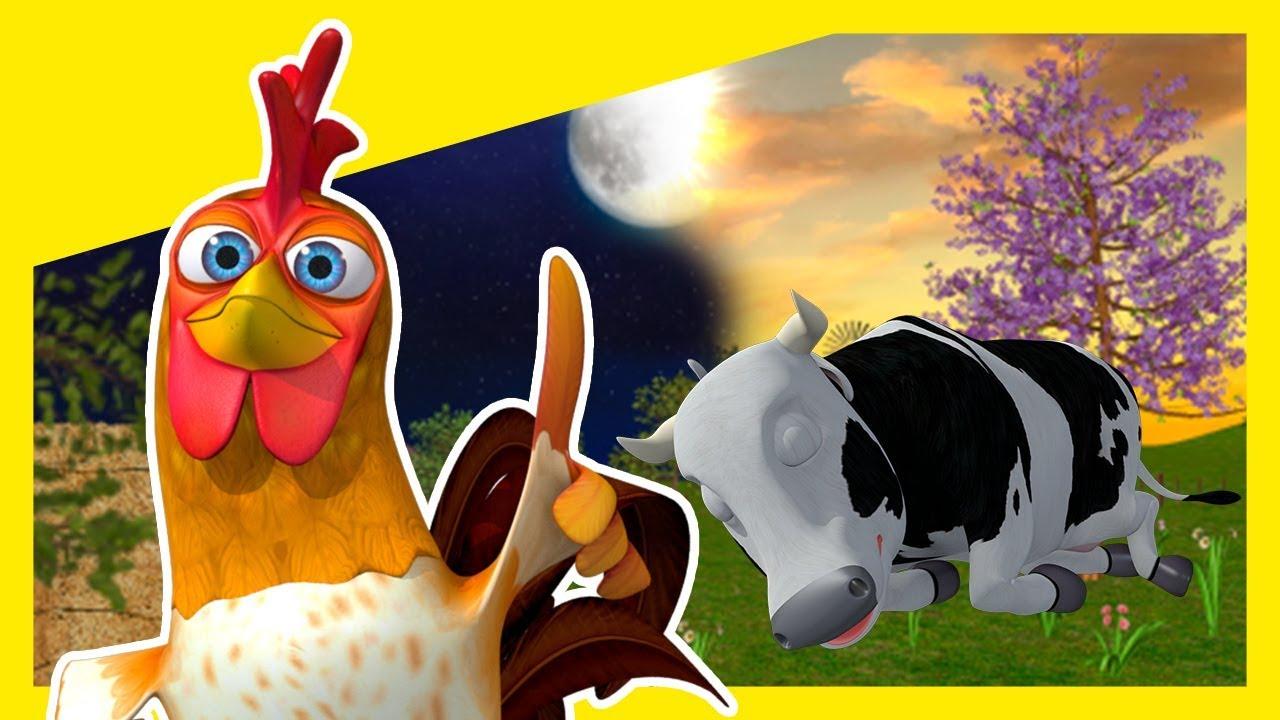 ¿Qué Hacemos de Día y De Noche? - Animales de La Granja de Zenón | La Granja de Zenón