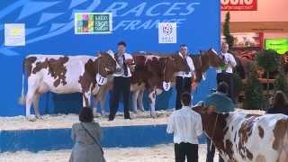 Concours race Pie Rouge des Plaines