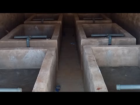 WORLD CLASS FISH HATCHERY 98% COMPLETED