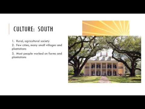 Northern vs. Southern Colonies