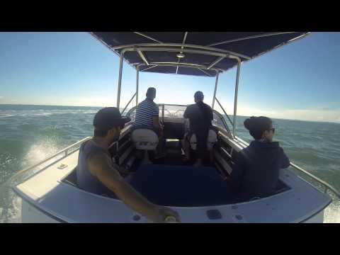 Moreton Bay Boating