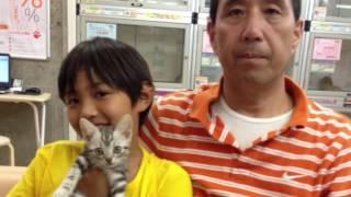 子犬子猫の専門店ペットショップCoo&RIKUの紹介動画をご覧いただきあり...