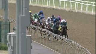 Vidéo de la course PMU PRIX WWW.TRACKANDBALL.CO.ZA MAIDEN PLATE