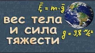 СИЛА тяжести - ВЕС тела - 7 класс - Романов