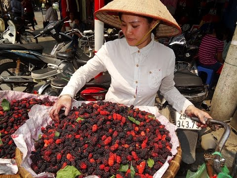 AMAZING VIETNAM, VIETNAM TRAVEL, HANOI STREET FOOD, VIETNAM FOOD, STREET FOOD IN VIETNAM
