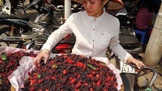 VIETNAM TRAVEL, VIETNAM 2016, HANOI STREET FOOD, VIETNAM FOOD, STREET FOOD IN VIETNAM