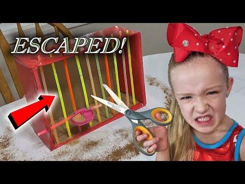 Evil Elf on the Shelf - Magic Cardboard Box Prison Escape!