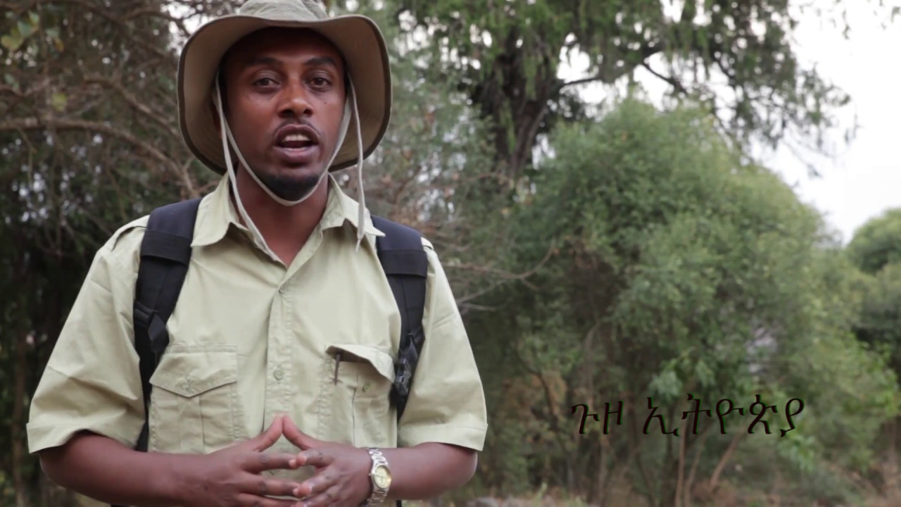 ጉዞ ኢትጵያ- Travel Ethiopia-Kuskwam Intro-ጉዞ ወደ ቁስቋም