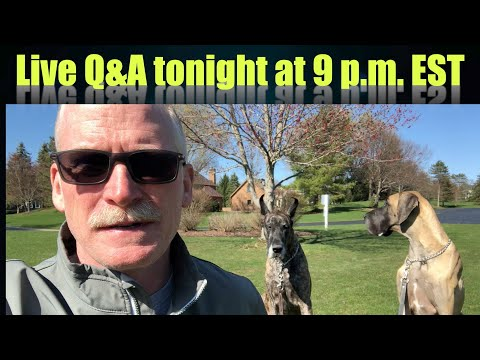 Taking my Great Danes to the Lake – LIVE Q&A tonight at 9p.m. EST