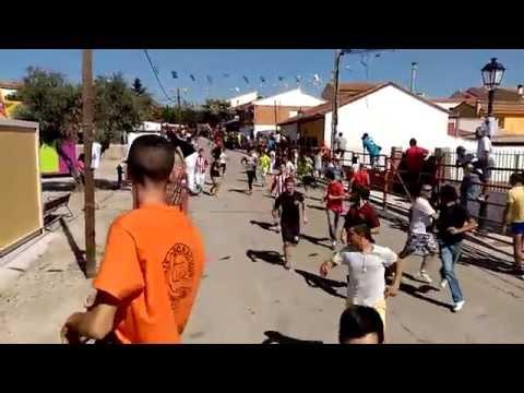 Encierros Navas Del Rey 2015