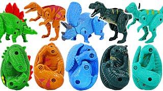 서프라이즈!! 변신 공룡 계란 칼라 놀이! 레드, 블루…