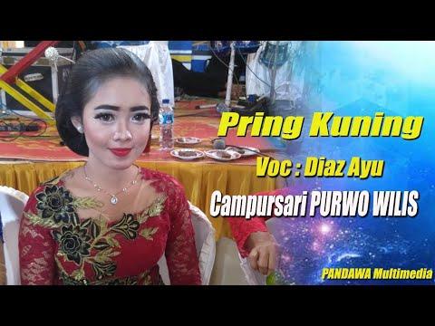 Pring Kuning - Diaz Ayu - PURWO WILIS