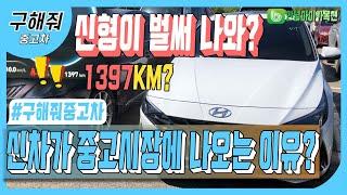 중고차 추천 신차가 시장에 나오는 이유는?! feat.…
