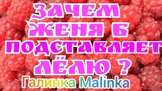 Деревенский дневник очень многодетной мамы /Женя Б /Зачем Женя Б подставляет Лелю? /Обзор Влогов /