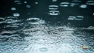 Rain soundtrack - full 60 minute soundscape
