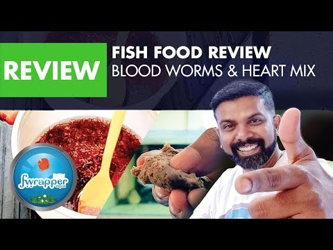 Fish Food Review || Blood Worms & Heart Mix || Discus Fish Food