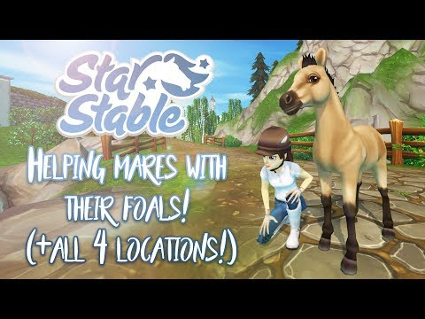 Helping Mares With Their Foals! (+ All 4 Locations) | Star Stable Updates
