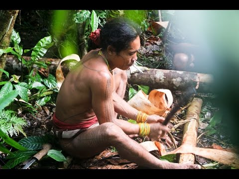 Living with Mentawai Tribes (Siberut, Sumatra), Avgust 2014