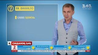Як виникло слово промінь – експрес-урок української мови