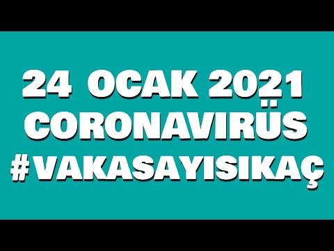 SON DAKİKA: 24 OCAK PAZAR | Korona virüs vaka sayıları tablosu | Bugünkü vaka sayısı
