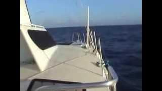 Catamaran ENJOI - CEBU/Philippines