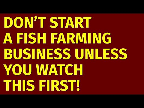 How To Start A Fish Farming Business | Including Free Fish Farming Business Plan Template