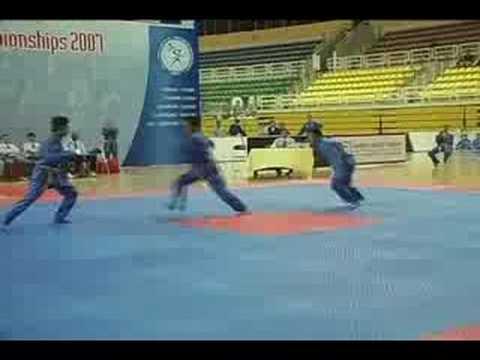 Vovinam World Championship Clip