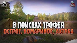 Закрываем трофеев. Русская Рыбалка 4