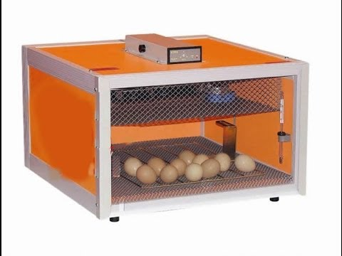todo incubadoras caseras