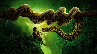 Video The Jungle Book Scene download MP3, 3GP, MP4, WEBM, AVI, FLV November 2019