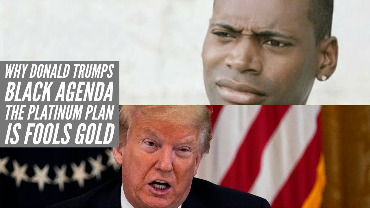 Donald Trumps Black Agenda The Platinum Plan Is Fools Gold
