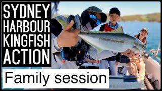 Sydney KINGFISH session and Ha…
