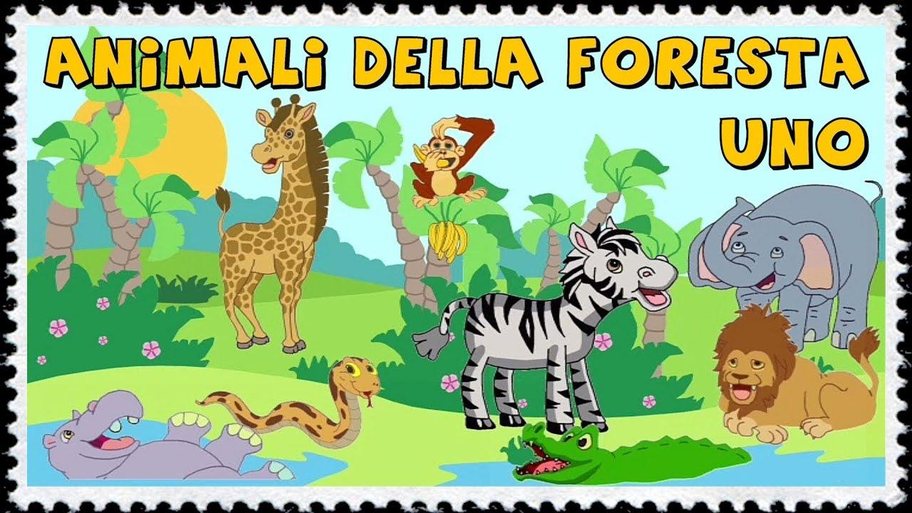 Animali della foresta per i piccolissimi youtube