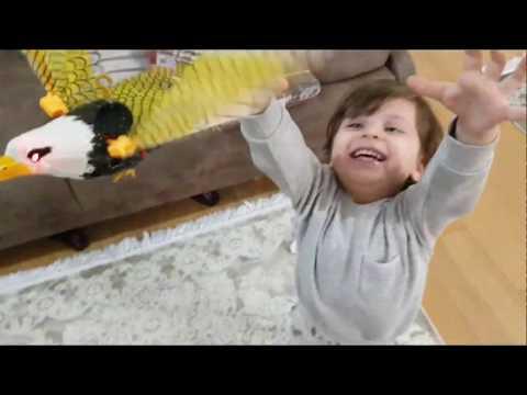 Bahçeye kuş aldık,bu videoda birde sürpriz var izlerken göreceksiniz Fatih Selimin yeni arkadaşı kim
