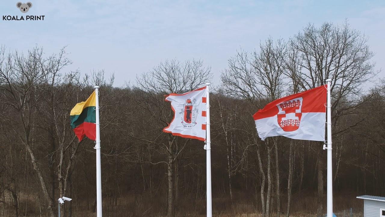 vėliavos ir vėliavų prekybos strategijos)