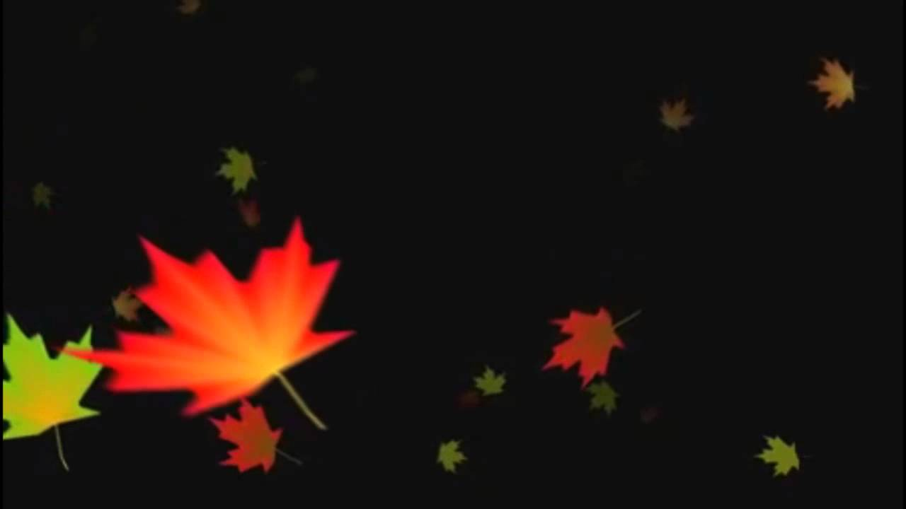 Free Animated Falling Leaves Wallpaper Falling Autumn Leaves Background Loop 3 Youtube