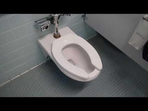 233. American Standard Afwall & Glenco Toilets
