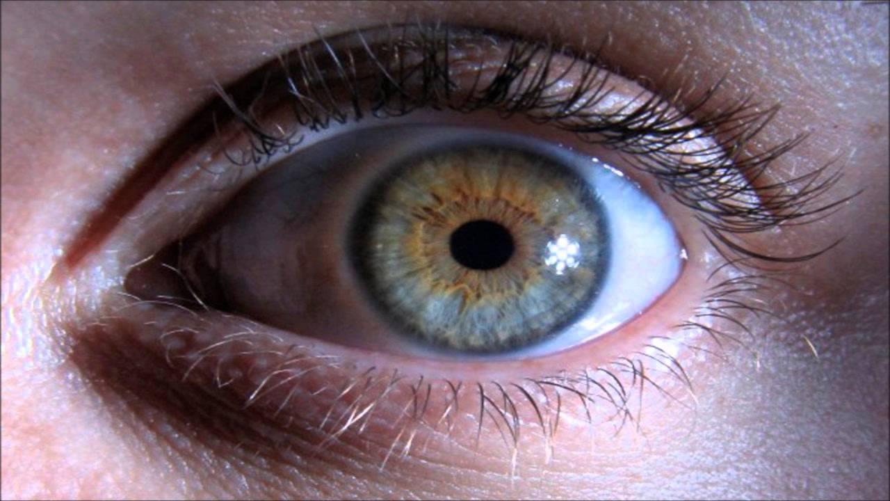 Mensajes subliminales para modificar el adn cambiar el color de ojos a turkesa verde azulado - Colores verdes azulados ...