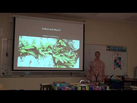 Advanced soil science with James Rushing Pt 1